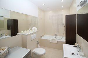 חדר שירותים עם ניאגרה סמויה