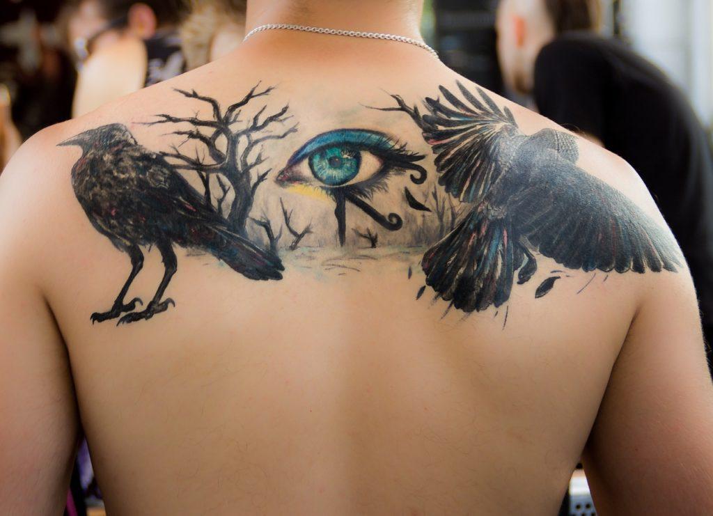 העין וציפורים
